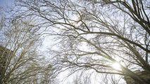 Meteorologii anunță când se va încălzi vremea în Republica Moldova