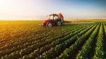 Agricultura, un domeniu care salvează economia R. Moldova: Prognoze