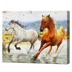 Алмазная мозаика + роспись по номерам 40x50 см Бегущие лошади YHDGJ75161
