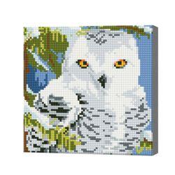Полярная сова, 20x20 см, алмазная мозаика