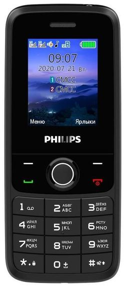 cumpără Telefon mobil Philips E117 Gray în Chișinău