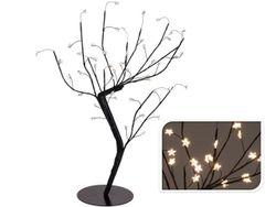 Copac decorativ