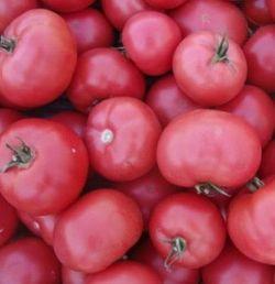 Esmira F1 (1000 semințe)