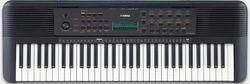 купить Цифровое пианино Yamaha PSR-E273 (+ Power Supply) в Кишинёве