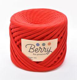 Berry, fire premium / Căpșună