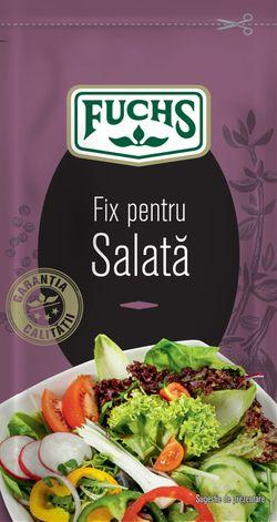 Fix pentru salată Fuchs plic 10g
