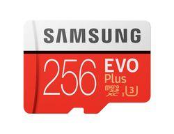 купить Флэш карта памяти Samsung MB-MC256GA/RU в Кишинёве