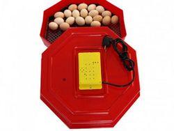 Incubator electric ERT-MN 9050/INC1(60 oua gaina sau 150 oua prepelita)