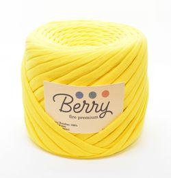 Berry, fire premium / Floarea Soarelui