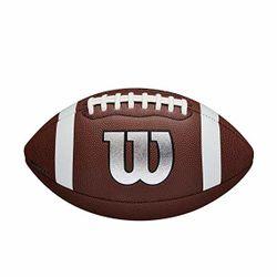 Мяч для американского футбола NFL LEGEND LOGO OFF BULK DEF WTF1729XBWilson  (3407)