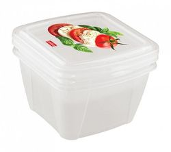 Container BYTPLAST 4311134 Fresco (set 2buc/0.5 L+1L)
