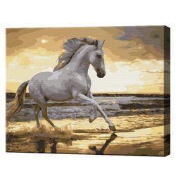 Белая лошадь на побережье, 40х50 см, картина по номерам BS30903
