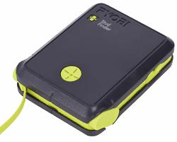 Detector Ryobi RPW-5500