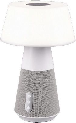 купить Настольная лампа Trio Dj Alba в Кишинёве