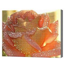 Сияющая роза 30x40