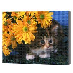 Кот и ромашки, 40x50 см, aлмазная мозаика