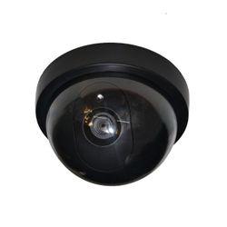 Камера слежения манекен Pigeon