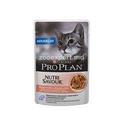 Pro Plan pentru pisici care locuiesc în cameră
