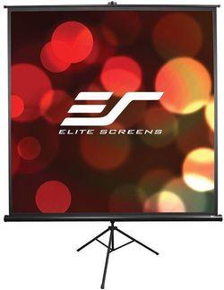 cumpără Ecran pentru proiector Elite Screens T119UWS1 în Chișinău