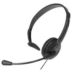 купить Наушники с микрофоном Panasonic RP-TCA400E-K в Кишинёве