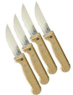 cumpără Set cuțite Pedrini 41808 Набор ножей для стейка, 4шт în Chișinău