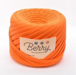 Berry, fire premium / Cătină