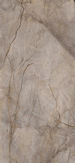 Wild Forest Grey Polished 120x260 cm