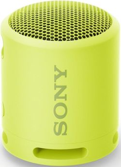 купить Колонка портативная Bluetooth Sony SRSXB13Y в Кишинёве