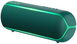 cumpără Boxă portativă Bluetooth Sony SRSXB22G în Chișinău
