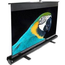 cumpără Ecran pentru proiector Elite Screens F100NWV în Chișinău
