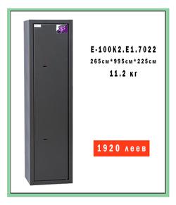 E-100K2.T1.7022