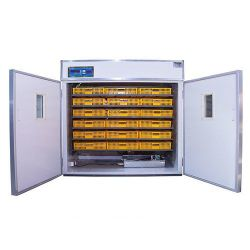 Инкубатор Ms-1584