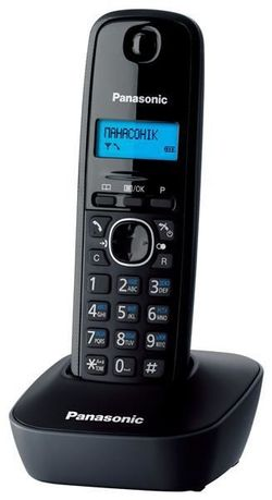 cumpără Telefon fără fir Panasonic KX-TG1611UAH în Chișinău