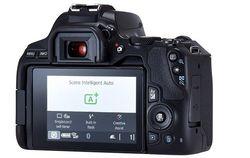 Aparat foto DSLR Canon EOS 250D + EF-S 18-55mm f/3.5-5.6 III