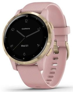 купить Смарт часы Garmin vivoactive 4S Dust Rose/Light Gold, S.EU в Кишинёве