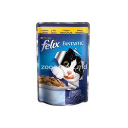 Felix Fantastic с курицей