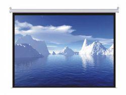 Экран для проектора Atria Electrical 244x183cm (MRS-NTSC-120D)