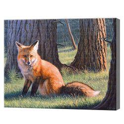 Лиса в лесу 40x50