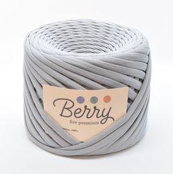 Berry, fire premium / Argint