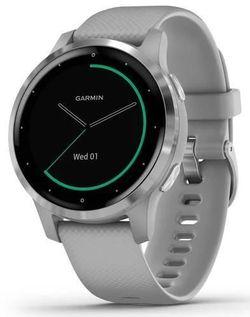купить Смарт часы Garmin vivoactive 4S Powder Gray/Silver, S.EU в Кишинёве