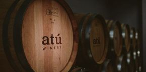 ATU Winery
