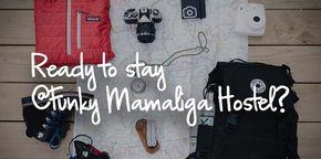 Funky Mamaliga Hostel