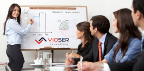 Vioser Consulting