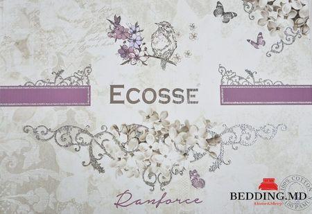 """cumpără Lenjerie de pat pentru două persoane Ecosse """"Safari"""", 100% cotton, Eurostandard, 2 fețe de pernă în Chișinău"""