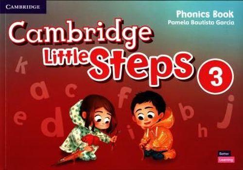 купить Cambridge Little Steps Level 3 Phonics Book в Кишинёве