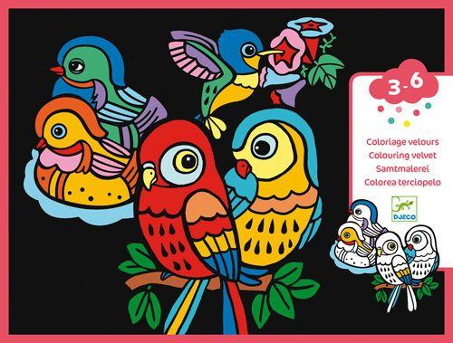 cumpără Coloring velvet-Baby birds în Chișinău