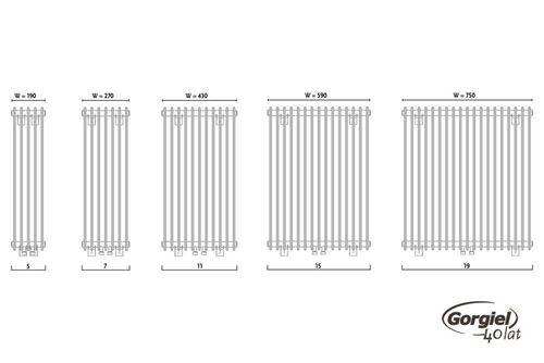 купить Дизайнерский радиатор GORGIEL IBERIS V AIB V 200/45 в Кишинёве