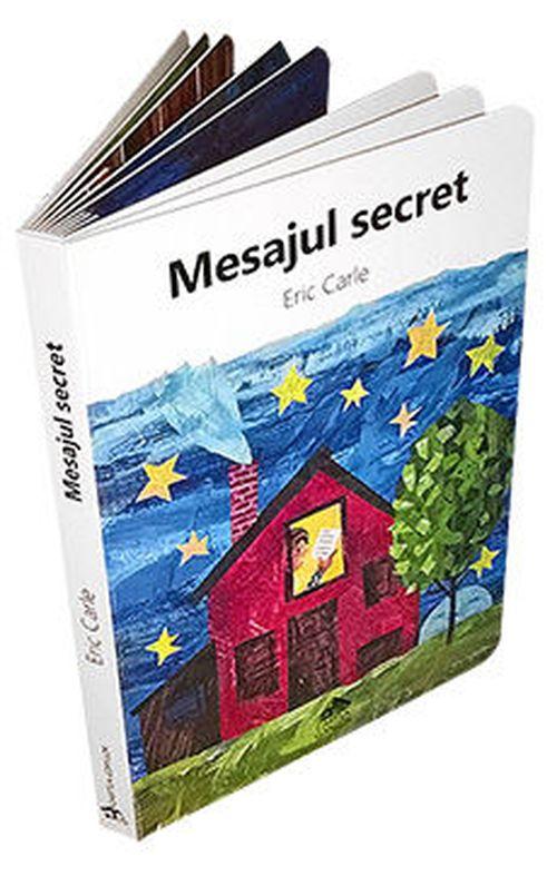 купить Mesajul secret в Кишинёве