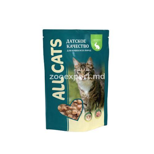 cumpără All Cats cu iepure 85 gr în Chișinău
