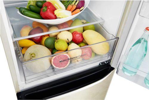 cumpără Frigider  cu congelator jos LG GA-B429SEQZ Smart în Chișinău